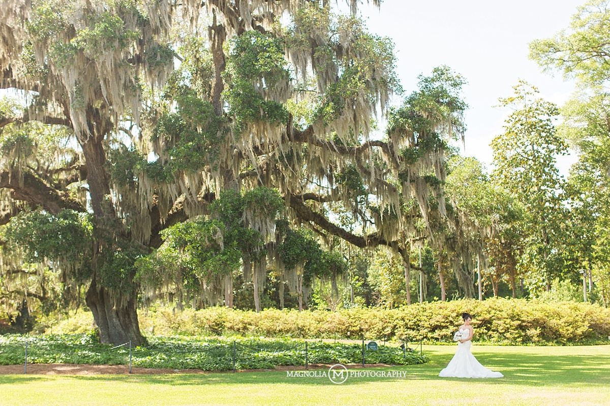 Airlie Gardens Wilmington Nc Wedding Photographer Sharon