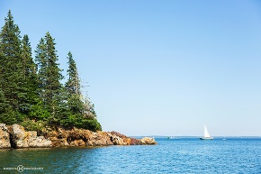 Owls head state park with sailboat